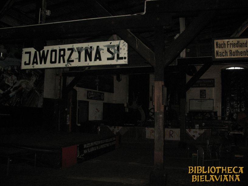 Biblioteka Bielawa 2010 Jaworzyna Śląska Bibliotheca Bielaviana (20)